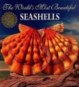 The World's Most Beautiful Seashells price comparison at Flipkart, Amazon, Crossword, Uread, Bookadda, Landmark, Homeshop18