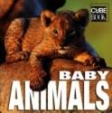 Baby Animals price comparison at Flipkart, Amazon, Crossword, Uread, Bookadda, Landmark, Homeshop18