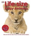 Life-Size: Baby Animals price comparison at Flipkart, Amazon, Crossword, Uread, Bookadda, Landmark, Homeshop18