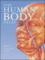 The Human Body Atlas: How the Human Body Works price comparison at Flipkart, Amazon, Crossword, Uread, Bookadda, Landmark, Homeshop18