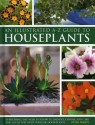 Illustrated A-Z Guide to Houseplants: Everything You Need to Know to Identify, Choose and Care for 350 of the Most Popular Houseplants price comparison at Flipkart, Amazon, Crossword, Uread, Bookadda, Landmark, Homeshop18