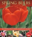 Spring Bulbs: An Illustrated Guide to Varieties, Cultivation and Care, with Step-By-Step Instructions and Over 160 Inspirational Pho price comparison at Flipkart, Amazon, Crossword, Uread, Bookadda, Landmark, Homeshop18