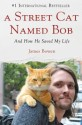 A Street Cat Named Bob: And How He Saved My Life price comparison at Flipkart, Amazon, Crossword, Uread, Bookadda, Landmark, Homeshop18