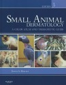 Small Animal Dermatology: A Color Atlas and Therapeutic Guide 0003 Edition price comparison at Flipkart, Amazon, Crossword, Uread, Bookadda, Landmark, Homeshop18