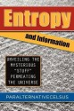 Entropy and Information: Unveiling the Mysterious Stuff Permeating the Universe price comparison at Flipkart, Amazon, Crossword, Uread, Bookadda, Landmark, Homeshop18