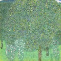 Ocher Art 30x30 INCHES, Gustav Klimt   Rose bushes under the Trees Canvas Painting available at Flipkart for Rs.8100