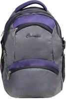 Cosmus SUN GREY PURPLE 35 L Large Backpack