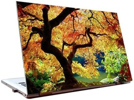 Dealmart Tree - Nature - Colours - HD Quality Vinyl Laptop Decal