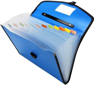 TRANBO Polypropylene Full Expanding A4 Document Organizer with 13 Pockets, Handle, Index Tab