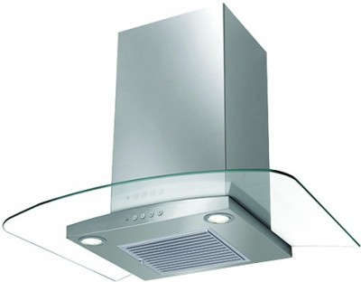 Faber Hood Ray Plus LTW 60 (110.0329.043) Wall Mounted Chimney