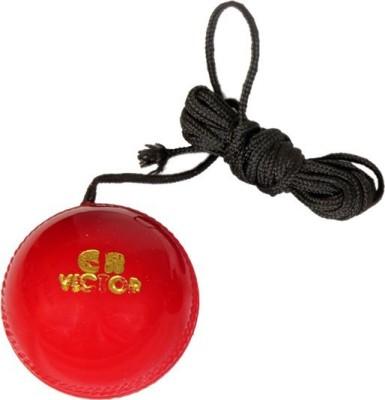 GB Hanging & Knocking Cricket Training Ball