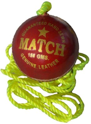Tima Sports Hanging Shot Practise Cricket Ball - Size: 6 (Pack of 1, Red) Cricket Training Ball - Size: 6