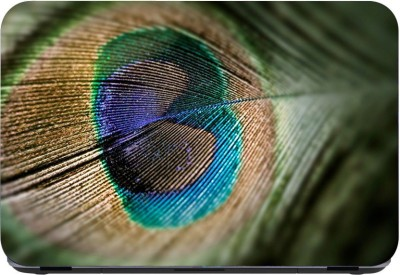 Flipkart SmartBuy Peacock Feather 3m or avery imported vinyl woith lamination Laptop Decal 15.6