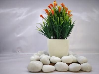 VINTAGEART Bonsai Wild Artificial Plant  with Pot