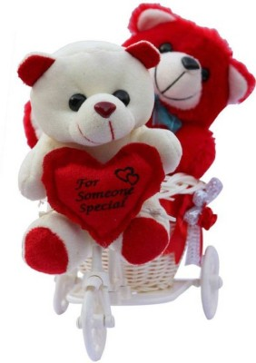 ME&YOU Romantic Cycle Teddy Return Gifts for Wife Girlfriend Sister On Birthday, Anniversary, Rakhi, Valentine's Day IZ18TRWCycle-001  - 16 cm