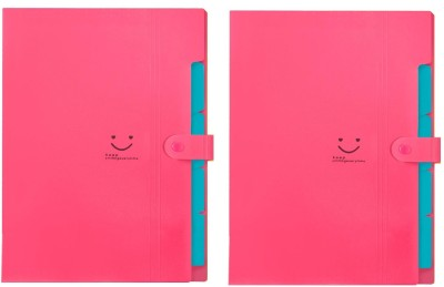 Techtest ( Pack of 2 ) File Folders 5 Pocket for Certificates Documents A4 Size Folder Plastic Files and Briefcase Bag Exam Board Papers Organiser Office Document Pockets Best Quality A4 File Folder
