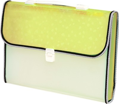 ZesTale Polypropylene 13 Pocket Expanding File with handle and Index tab Document File Folder