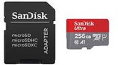 SanDisk 256 256 GB MicroSD Card Class 10 100 MB/s  Memory Card