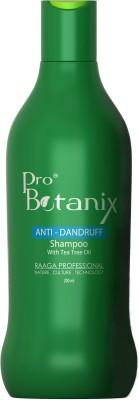 Raaga Professional ProBotanix Anti Dandruff shampoo