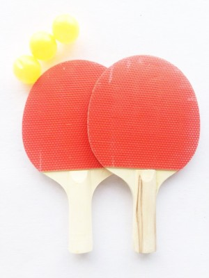 Milestouch Exim Stationary Indoor Table Tennis Table